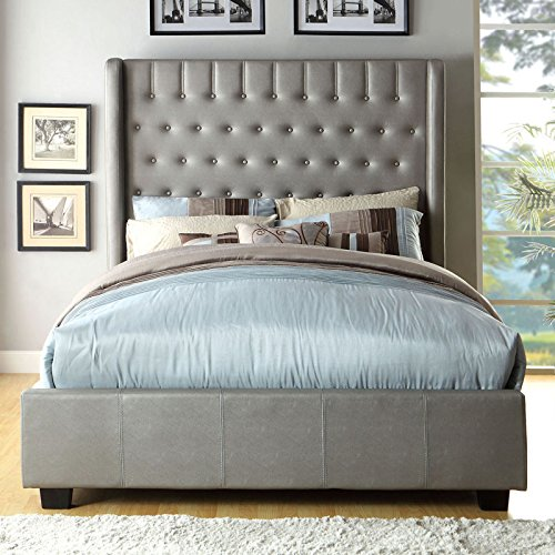 Mira Contemporary Style Silver Tone Finish Queen Size Bed Frame Set