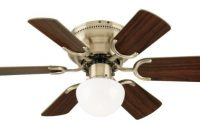 Westinghouse Lighting 7215800 Petite Single-Light 30-Inch Reversible Six-Blade Indoor Ceiling Fan, Antique Brass with Opal Mushroom Glass, Includes Bulb