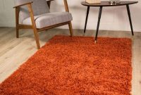 Terracotta Orange Luxury Shaggy Shag Area Rug Mat